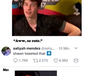 shawn, fangirl, and mendes army image
