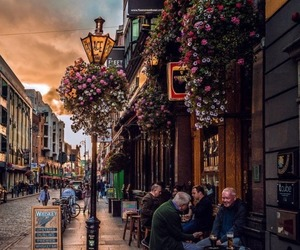 dublin, travel, and flowers image