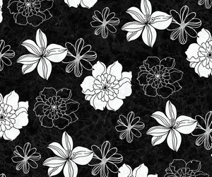 background, black and white, and blossom image