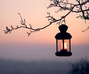 light, sunset, and nature image