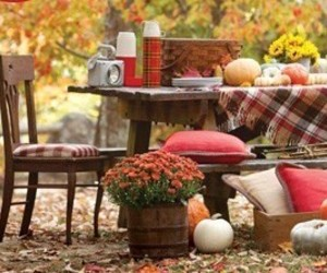 autumn, country living, and farm image