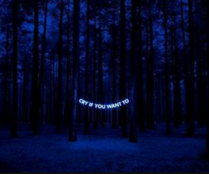 cry, blue, and forest image