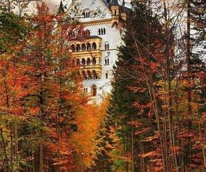 autumn, fall, and castle image
