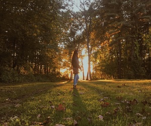 adventure, autumn, and happy image
