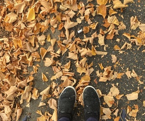autumn, fall, and goals image
