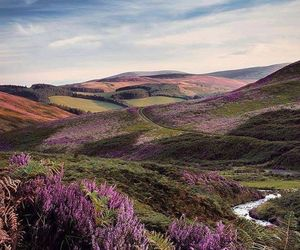 landscape, nature, and scotland image