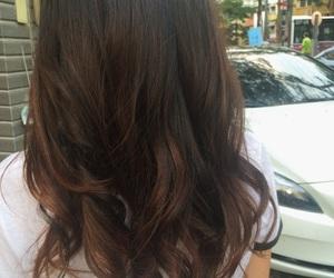 brown hair, hair, and highlights image