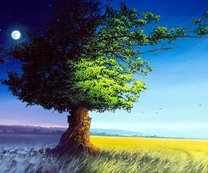 amazing pictures, photography inspiration, and tree painting image