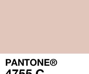 pantone image