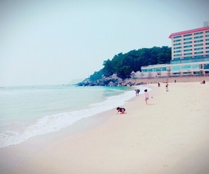 beach, busan, and family image