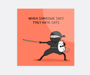 cats, funny, and illustrations image