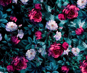 flowers, rose, and floral image