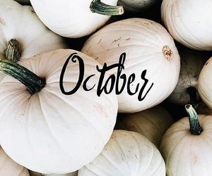 aesthetic, Halloween, and pumpkins image