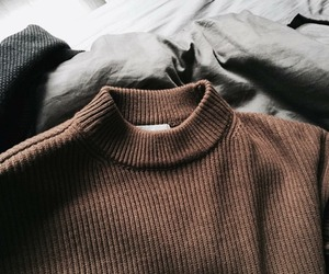 autumn, fall, and brown sweater image