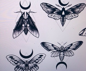 art, moon, and moth image