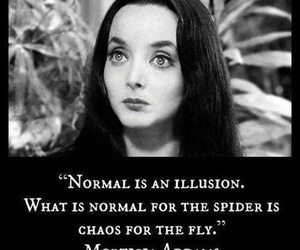illusion, quotes, and normal image