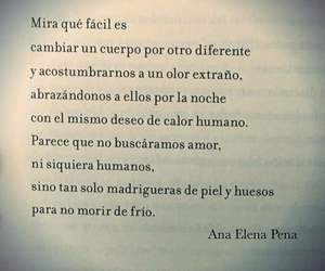 amor, books, and chicas image