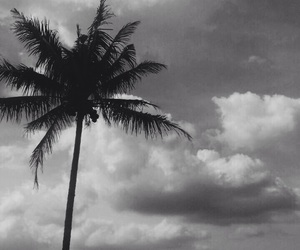 aesthetic, black and white, and indonesia image