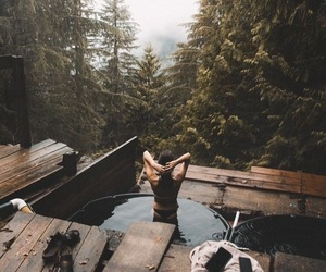 nature, adventure, and forest image