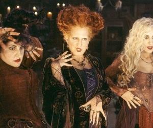 witch, hocus pocus, and Halloween image