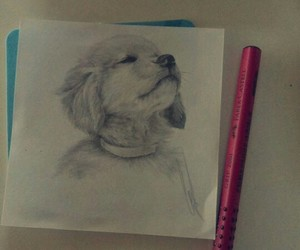 cutie, doggy, and drawing image
