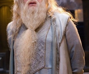 harry potter, dumbledore, and michael gambon image