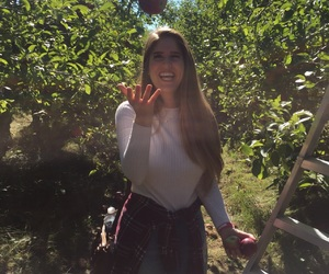 apple, autumn, and longhair image