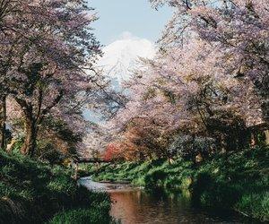 art, beautiful, and 富士山 image