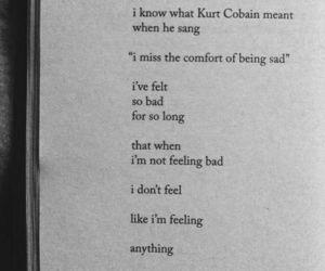 feel, kurt cobain, and music image
