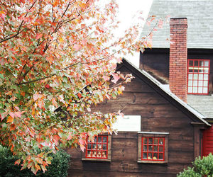 country, country living, and fall image