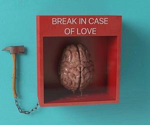love, brain, and break image