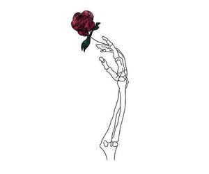 aesthetic, rose, and skeleton image