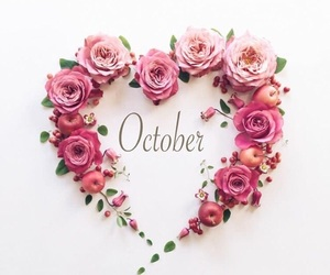 flowers, october, and autumn image