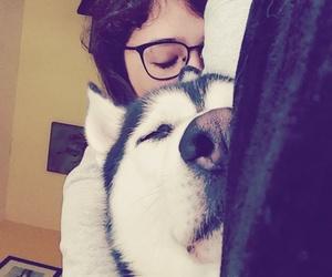 adorable, black & white, and dog image