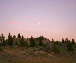 nature, moon, and sky image