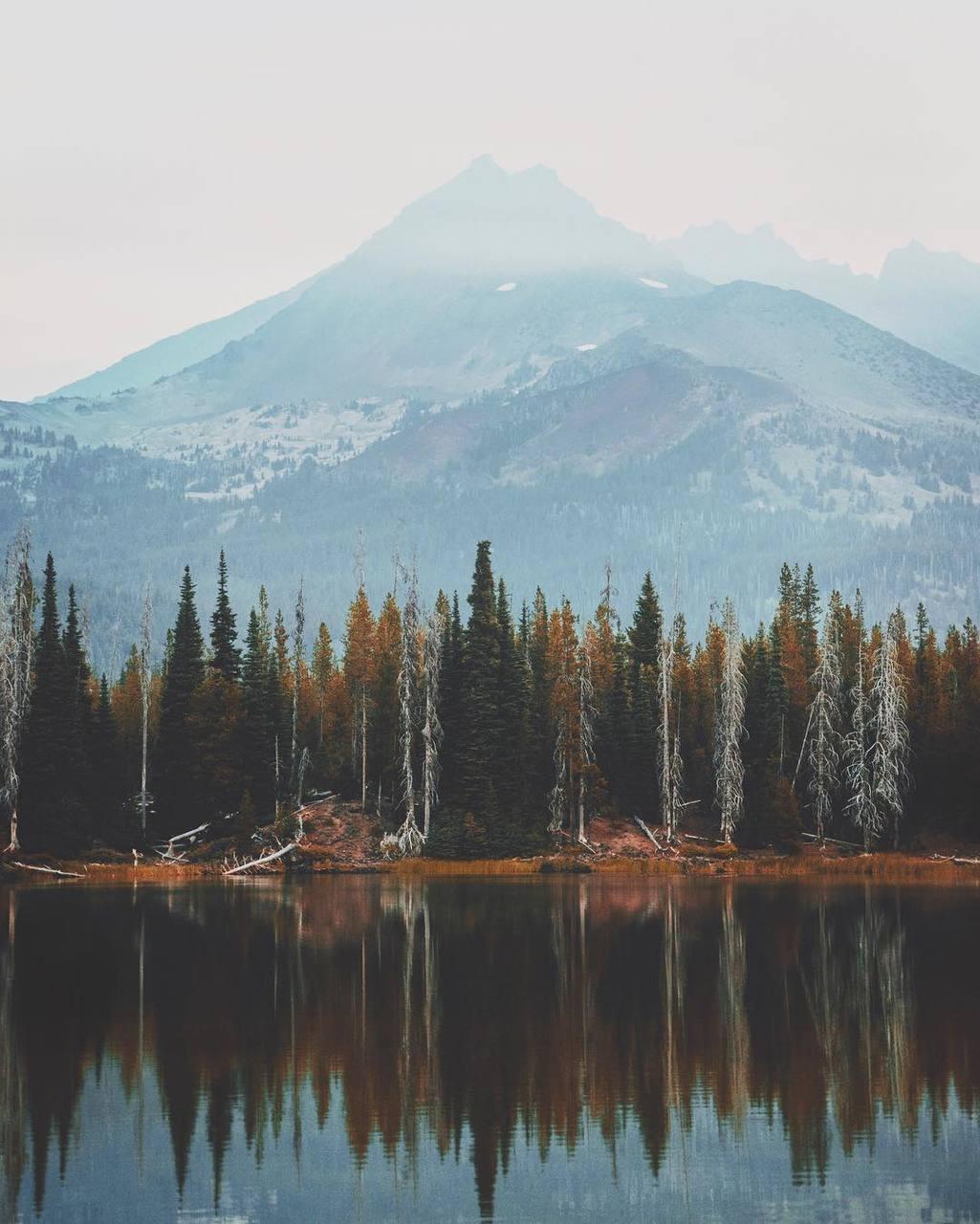 autumn, explore, and fall image
