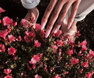 flower, flowers, and nail image