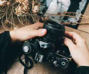 autumn, camera, and photography image