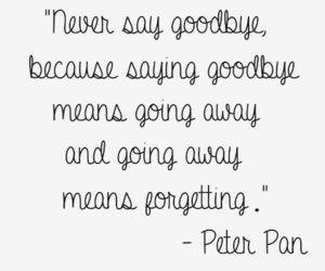 quotes, peter pan, and goodbye image