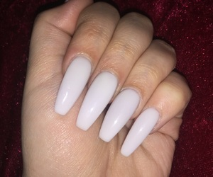 acrylic, autumn, and claws image