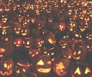 light and pumpkins image