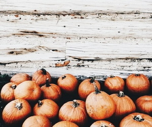 aesthetic, fall, and pumpkins image