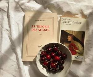 book, aesthetic, and cherry image
