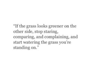 grass, life, and quotes image