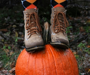 autumn, colorful, and Halloween image