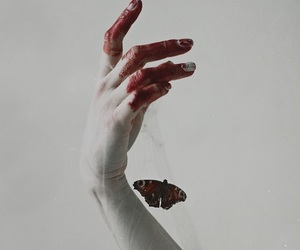 blood, butterfly, and white image