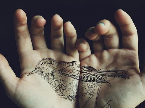 bird, tattoo, and hands image