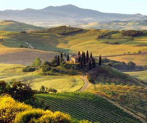 nature, italy, and Tuscany image