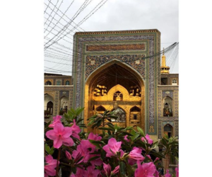 allah, dz, and iranian image