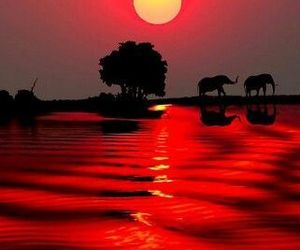 sunset and south africa image